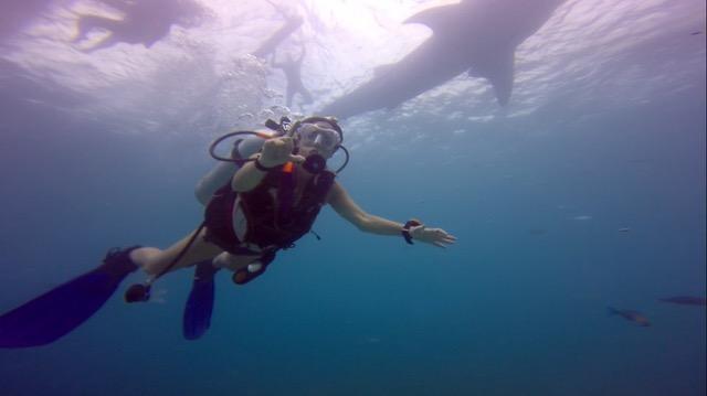 Tubaroes-baleia-filipinas-oslob- - 1 (5)