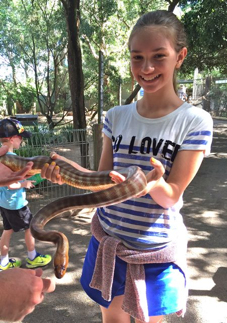 Australia-Sydney-Cobra-Featherdale-Wildlife-Park