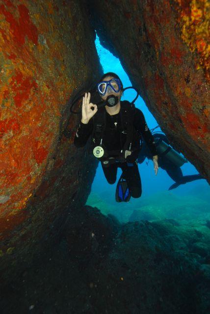 Você vai entrando por umas fendas e uns buracos com muitos corais e bastante vida.