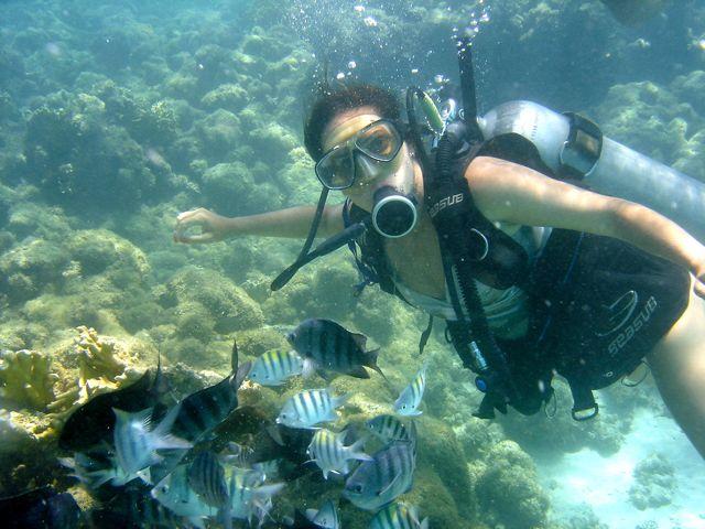 Maragogi-Padi-Scuba-diving