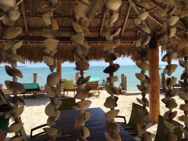 Praia-dos-Carneiros-corais-conchas