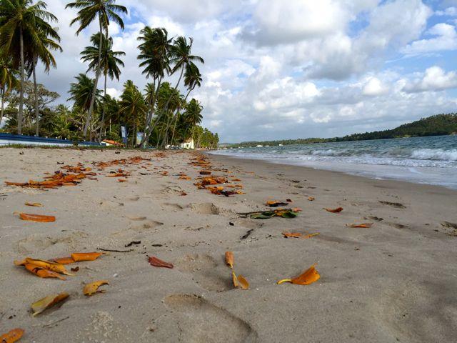 Praia-dos-Carneiros-paraiso