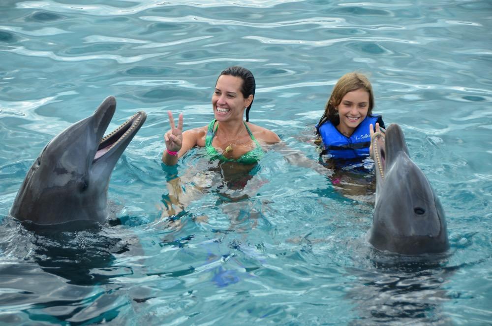 Curaçao | Nadando com golfinhos