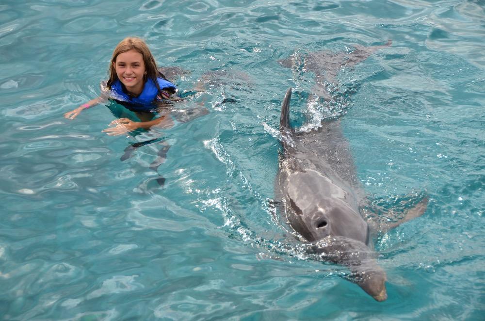 Curaçao golfinhos