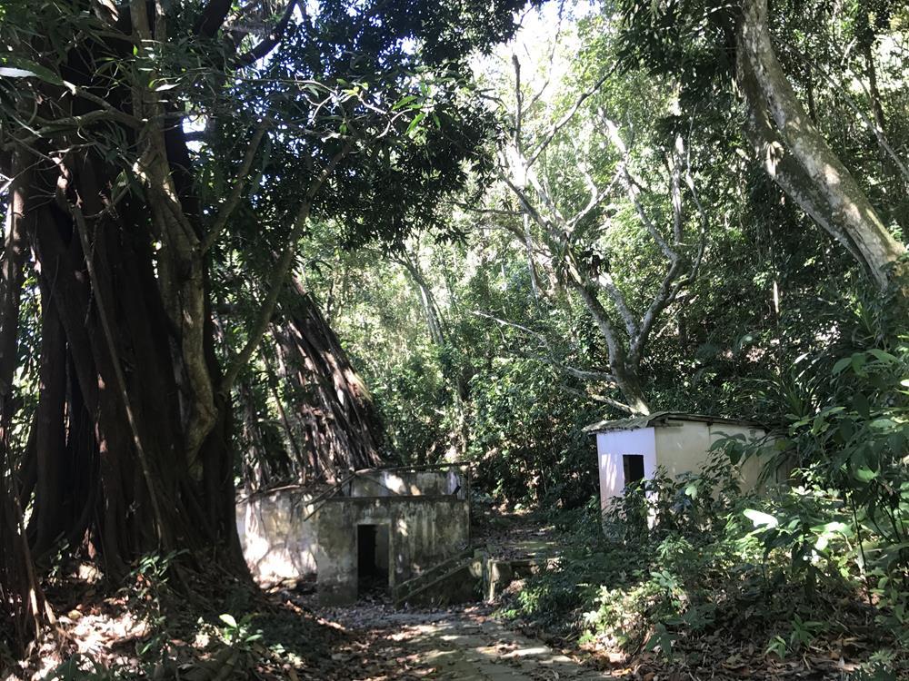 Praia do dentista, Angra dos Reis