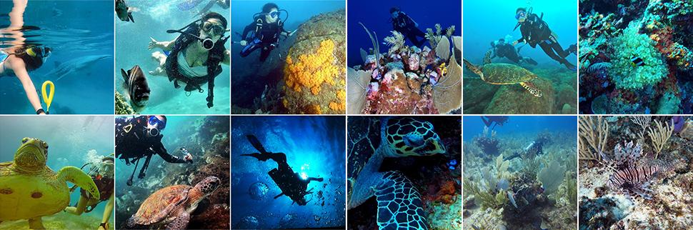 perfil-mergulho-galeria