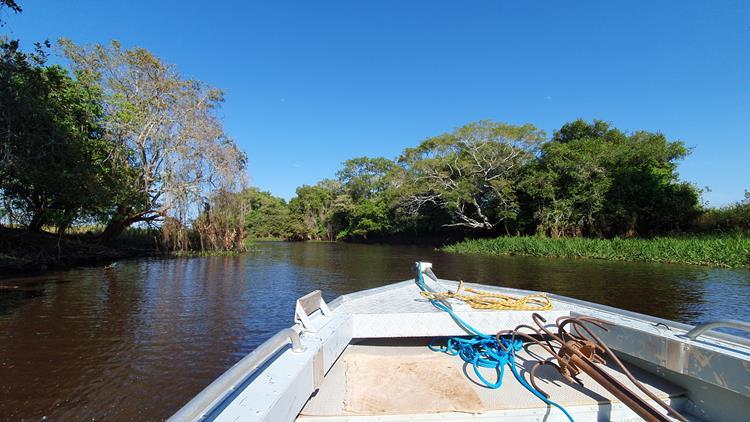 Rio Cuiabá Pantanal