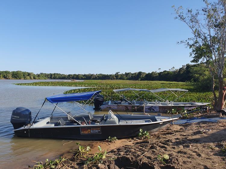 Porto Jofre Pantanal
