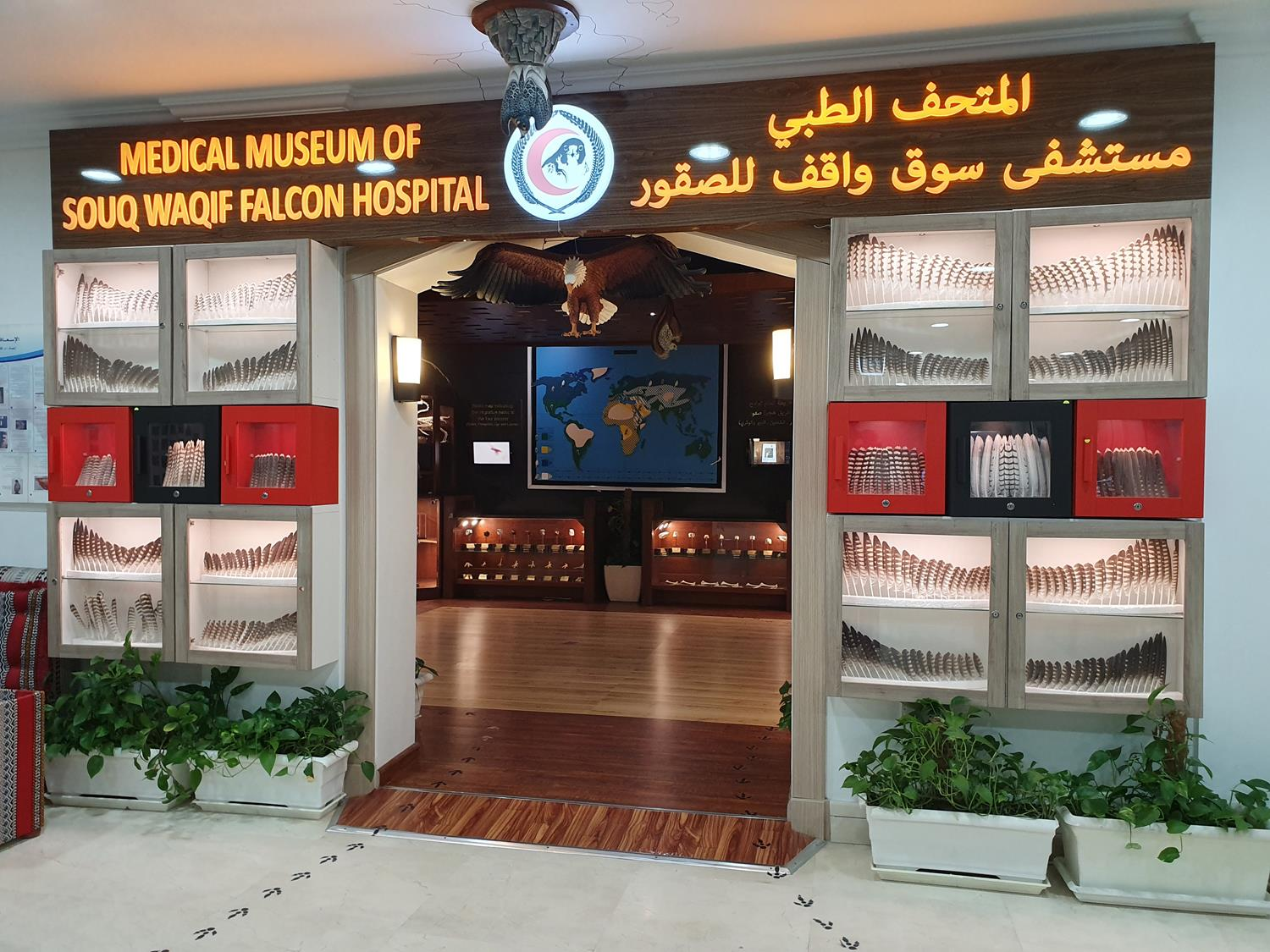 hospital de falcoes souk em Doha