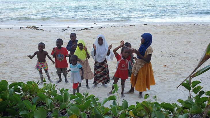 Dicas de Zanzibar