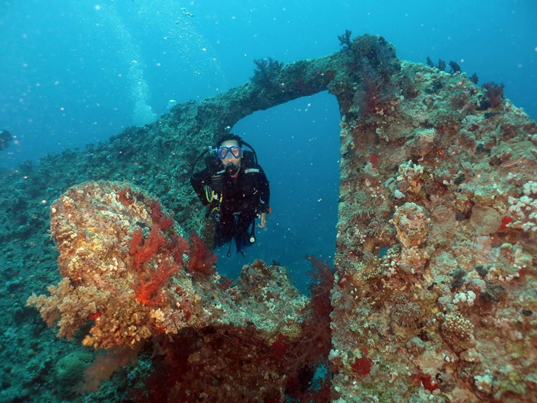 mergulho mar vermelho