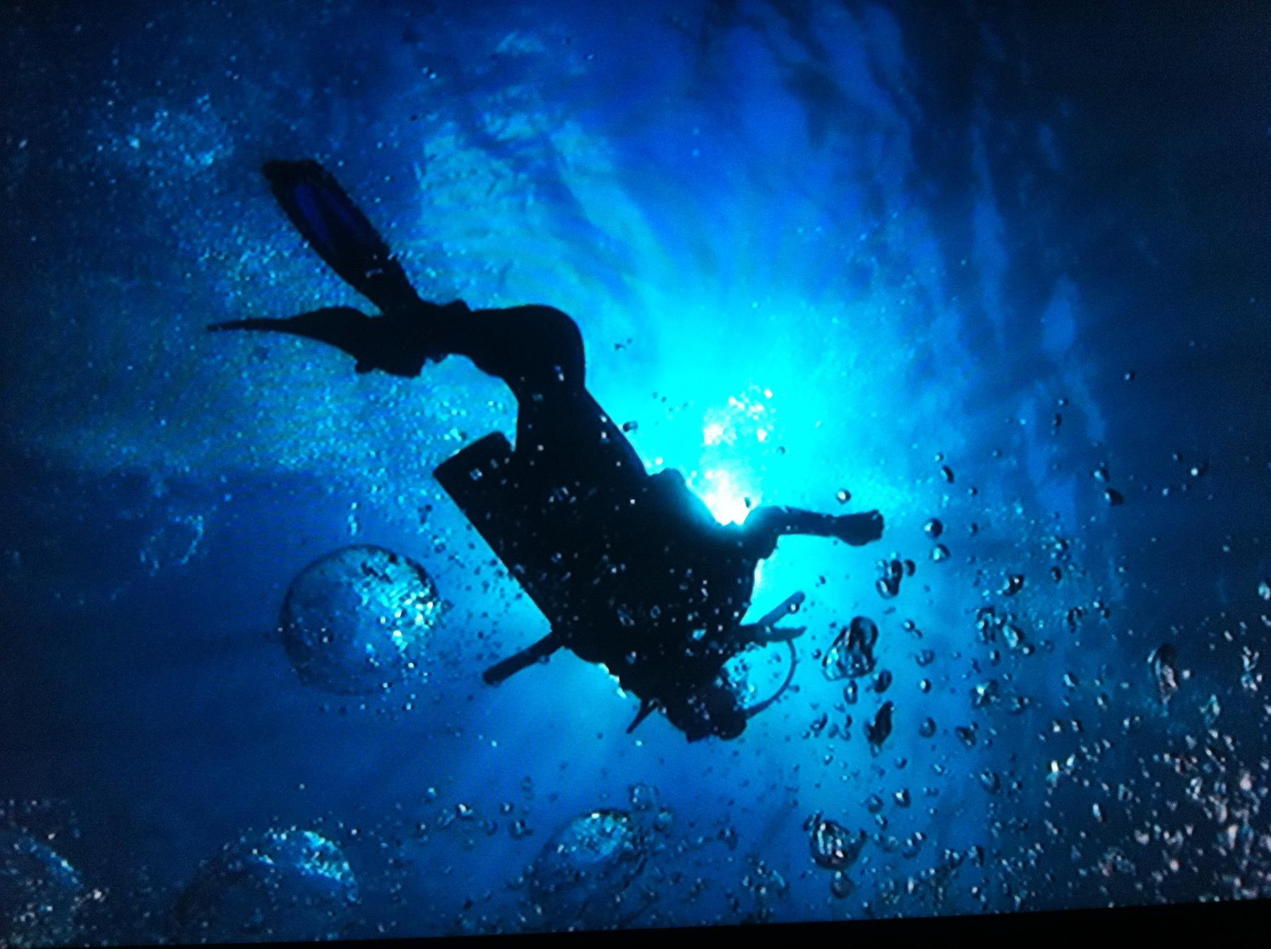 mergulho noronha