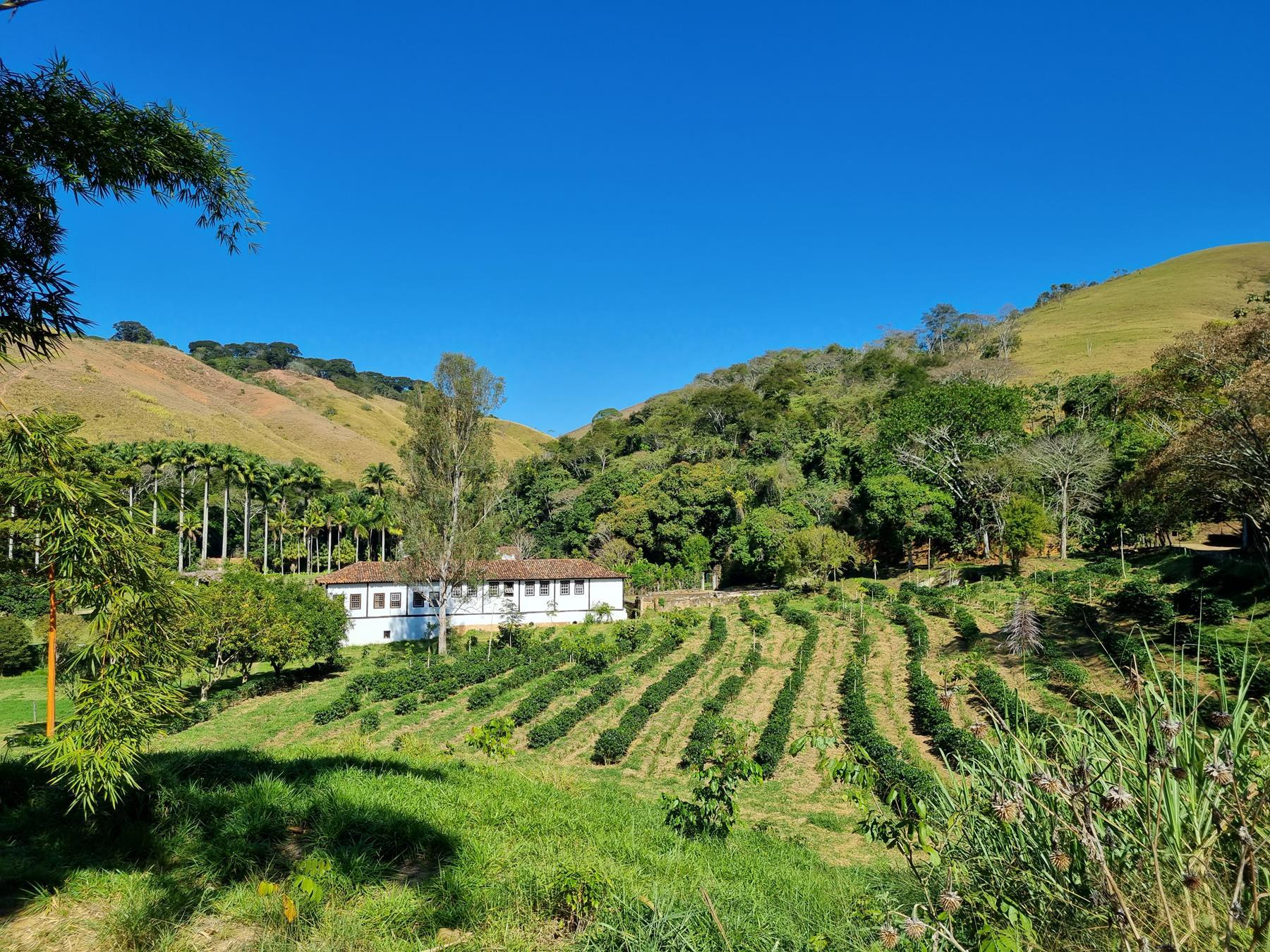 Fazenda Alliança no Vale do Café